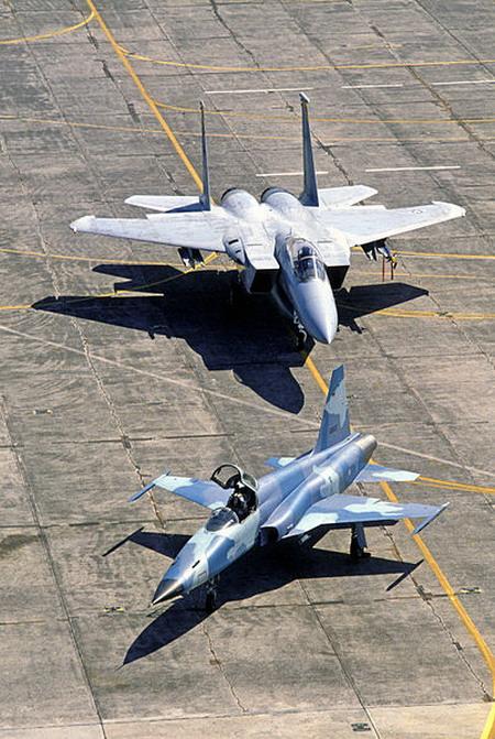 یک فروند اف-5 در کنار اف-15