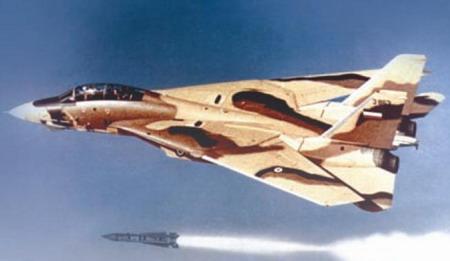 تامکت نیروی هوایی ایران در حال شلیک موشک فونیکس